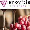 Enovitis In Campo Montepulciano Uluslararası Tarım, Ormancılık, Bahçecilik, Hayvancılık Fuarı